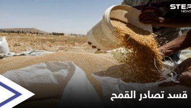 wheat 206062021