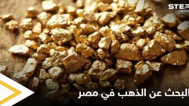 بقيمة 8 مليون دولار.. شركة كندية تستثمر في مجال التعدين والبحث عن الذهب في مصر