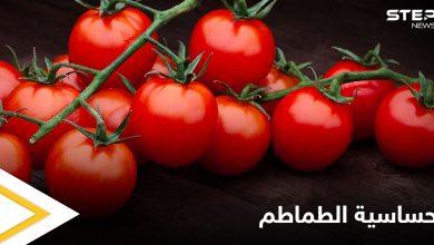ما هي حساسية الطماطم وهل هي خطيرة تعرف إلى أهم المعلومات عنها