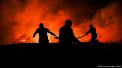 مصر تعلق على حرائق الغابات في تركيا معلنة تضامنها