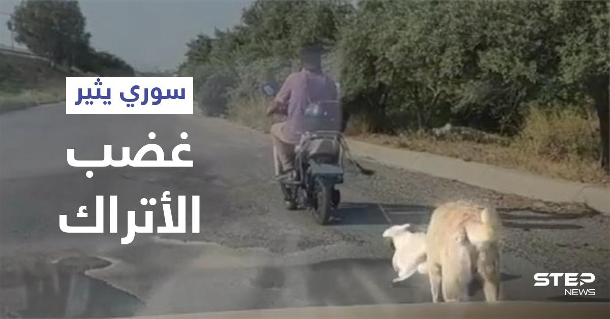بالفيديو   لاجئ سوري يربط كلب صغير بدراجته النارية ويجره خلفه وأمه تلاحقه