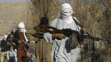 القوات الأفغانية تصفّي 7 قياديين من حركة طالبان دفعةً واحدة وعشراتٍ من مسلحيها