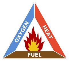 كيف تحدث حرائق الغابات ... تعرّف على عوامل انتشارها