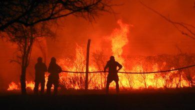 2020 09 24T224636Z 1896277764 RC2A5J91WELZ RTRMADP 3 ARGENTINA FIRES