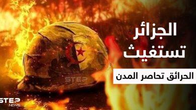 بالفيديو والصور|| حرائق الجزائر المدمرة تستفز فرنسا لتقدم المساعدة والشعب المحاصر بالنيران يستغيث