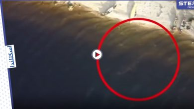 بالفيديو || للمرة الثانية.. وحش أسطوري يظهر في بحيرة لوخ نيس في اسكتلندا