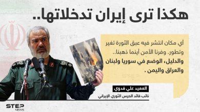 العميد علي فدوي (نائب قائد الحرس الثوري الإيراني)، يجد تدخلات إيران في بعض الدول؛ سبباََ لأمانها وتطورها