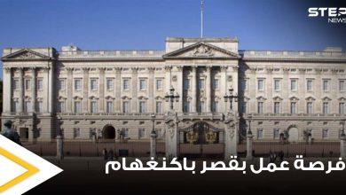 الخبرة ليست مطلوبة.. فرصة عمل ذهبية داخل قصر باكنغهام براتب 15 ألف دولار شهرياً