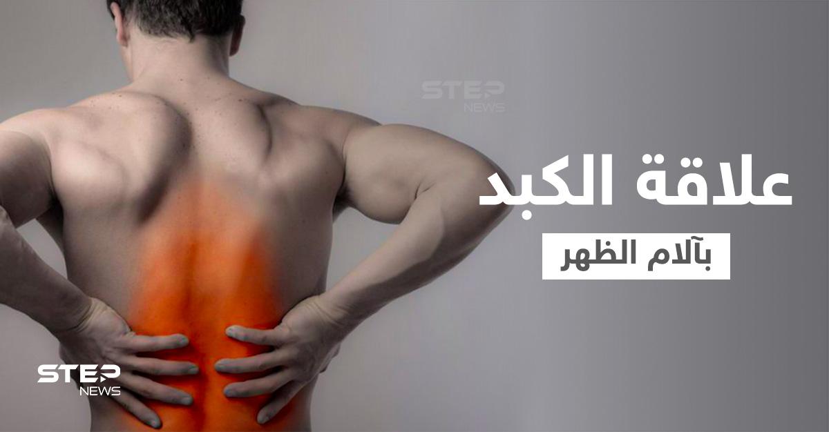 هل الكبد يسبب ألم الظهر وما هي الأعضاء الداخلية الأخرى التي تؤدي إلى ذلك