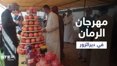شاهد || جانب من فعاليات مهرجان الرمان ببلدة السوسة شرقي دير الزور
